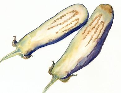 Eggplant lo.jpg