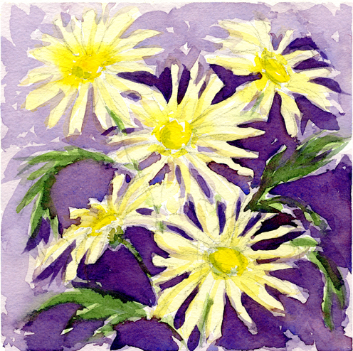Yellow Daisies lo