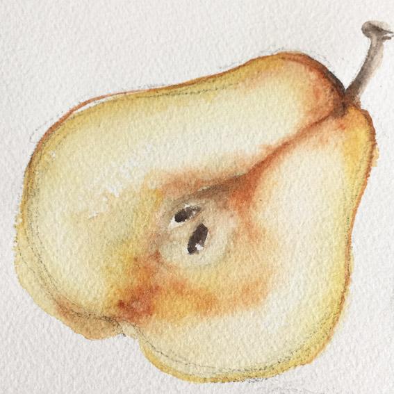 Half pear lo.jpg