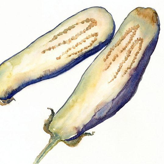 eggplant-lo-crop-2